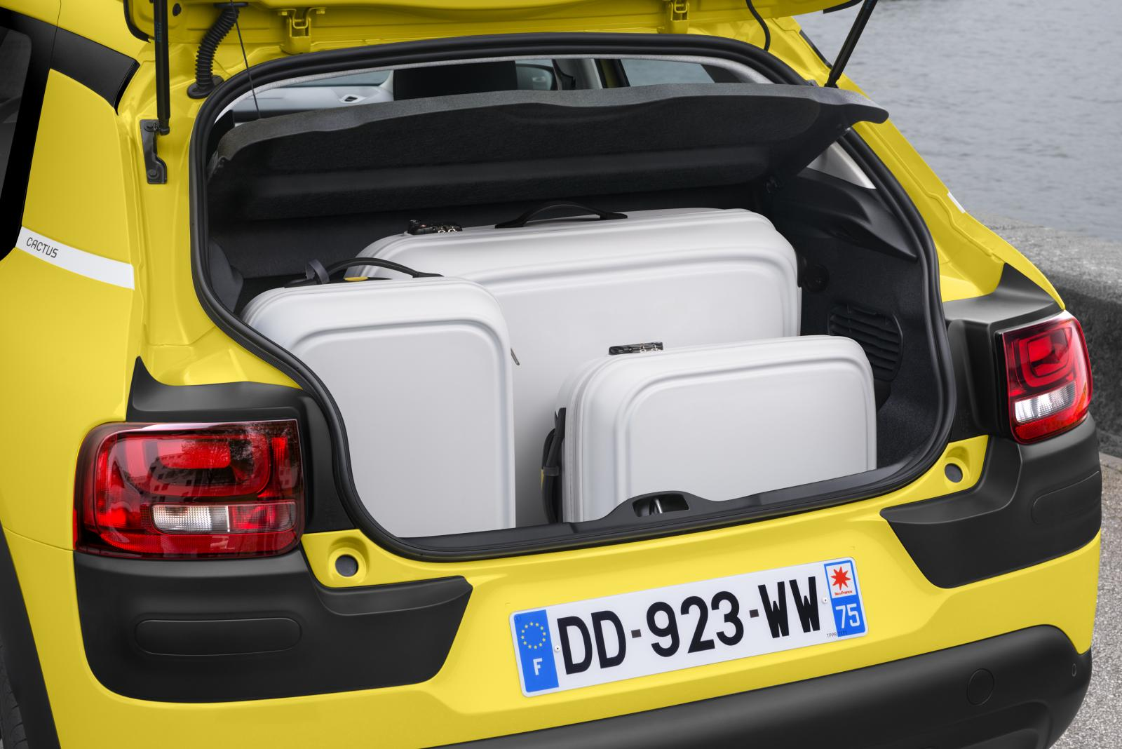 C4 Cactus Feel edition 2014 coffre ouvert